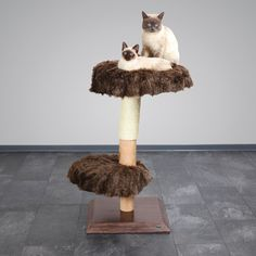 The elegant cat condo features a stable base, natural wood post partially covered in durable sisal, and two ultra-plush padded lying platforms.