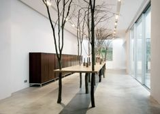 Loft Ideas:  This looks pretty unusual and different!  tree-table