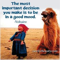 The most important decision you make is to be in a good mood.  Voltaire