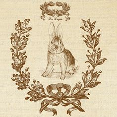 French Rabbit Le Lapin