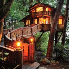 Wonderful tree house - Robinson Caruso would be proud!