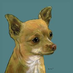 TAN CHIHUAHUA...This little cutie pie is available as greeting cards,too.  You can even put in your own personal message.  WOOF!  Click the pic to learn more.   ~Moses