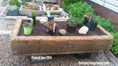 Hooked on Hypertufa? Addicted to Hypertufa? Succulent Gardening, Gardening Tips, Small Backyard Landscaping, Backyard Ideas, Garden Ideas, Diy Concrete Planters, Outdoor Furniture Sets, Outdoor Decor, Outdoor Living