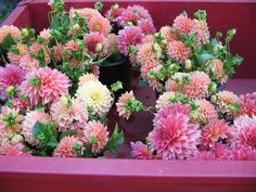 Kalamazoo Market Photo:  This Photo was uploaded by flowerfarmer. Find other Kalamazoo Market pictures and photos or upload your own with Photobucket fre...