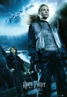 Fleur and Ron Goblet of Fire wallpaper containing a suit and a business suit in The Fleur Delacour Club Harry Potter Poster, Harry Potter Goblet, Harry Potter Universal, Harry Potter Characters, Harry Potter World, Harry Potter Wallpaper, Hogwarts, Mike Newell, Gina Weasley
