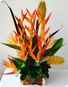100 pcs Heliconia Bonsai Perennial Angiosperm Plants Flower Succulent Purifying air potted plants for Home Garden Easy to Grow