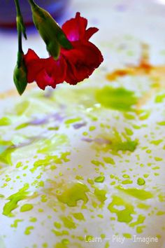 Painting with flowers using homemade watercolors made from real flowers!