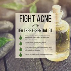 Tea tree essential oil is one of the best oils to treat pimples, black heads, and clogged pores. Blend with a carrier oil or unscented lotion and apply to the skin each day to stay blemish free. Essential Oils Pimples, Essential Oils For Face, Tea Tree Essential Oil, Organic Essential Oils, Young Living Essential Oils, Essential Oil Blends, Tea Tree Oil Uses, Tea Tree Oil For Acne, Pimples Remedies