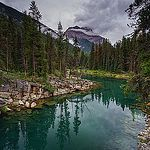 Horseshoe Lake by Carrie Cole Photography