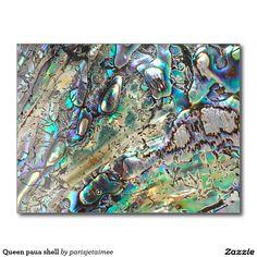 #pauashell #sea #ocean #shell #postcard Queen paua shell postcard