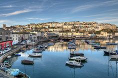 Brixham Early Morning - Western Morning View in the Western Morning News 2/12/2014