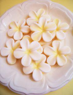 Hey, I found this really awesome Etsy listing at https://www.etsy.com/listing/157001412/plumeria-soap-set-flower-soap-frangipani