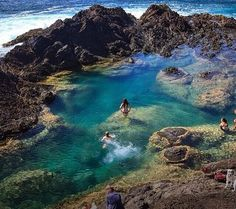 Mermaid pools, New Zealand More
