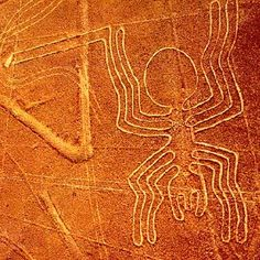 Would so love to go and see these. The Nazca Lines are a series of ancient geoglyphs located in the Nazca Desert in southern Peru. (Designated as a UNESCO World Heritage Site in Ancient Aliens, Ancient History, Machu Picchu, Nazca Peru, Peruvian Art, Nazca Lines, Titicaca, Mysterious Places, Mystery Of History