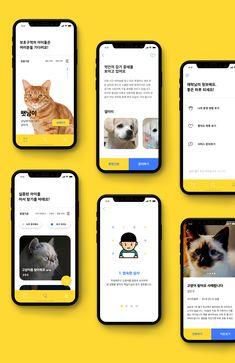 유기동물 보호구역 :: Protective Area of Abandoned Animal on Behance – Design is art Ui Design Mobile, App Ui Design, Mobile Ui, Interface Design, User Interface, App Promotion, Card Ui, App Design Inspiration, Branding