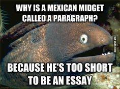 Hahaha Mexican paragraph