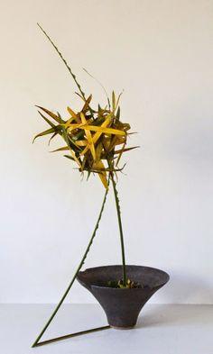 Irene: QLD, Australia ~ Ikebana Gallery Award