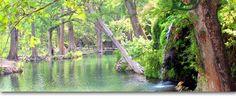 Krause Springs. My favorite swim hole. Spicewood, TX.