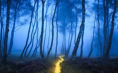 Stanton Path | by J C Mills Photography
