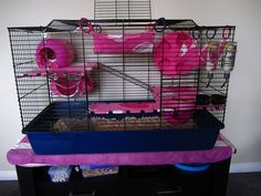 rat cage ideas !! luv this one <3