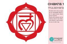CHAKRA 1 - MULADHARA El chakra de la raíz se ocupa de las necesidades físicas y de la supervivencia básica del ser humano. Dentro del conjunto de los chakras, tiene la tasa vibratoria inferior y está vinculado con el color rojo. #Chakra #Muladhara #Lam #BienestarParaEstarMejor