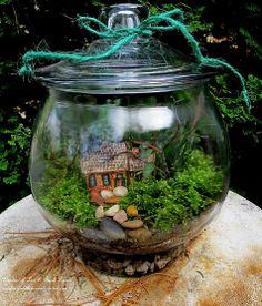 Terrariums. Love the mini cottage and stones here.