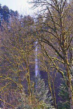 Travel & Landscape Photography, multnomah falls