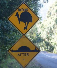 This road sign north of Cairns, Australia.