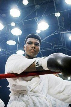 Muhammad Ali Boxing, Muhammad Ali Quotes, Kick Boxing, Muhammad Ali Wallpaper, Boxe Fight, Boxe Mma, Boxing Images, Boxing History, Photos Hd