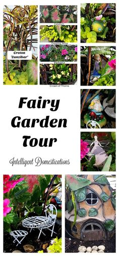 Come on along as we take you on a tour of our Fairy Garden. You'll see all of the accessories, meet the Fairy Princess and learn the names of all the plants in her garden garden ideas dollar store Our 2016 Fairy Garden Tour Dollar Store Christmas, Dollar Store Crafts, Dollar Stores, Fairy Garden Furniture, Diy Garden Decor, Garden Ideas, Garden Tips, Decor Crafts, Home Crafts