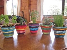 Crochet plant pot covers (I didn't check if there's a pattern...I just like it)