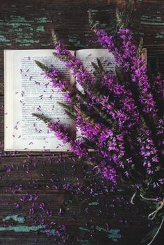 Floral Wallpapers for iPhone and Android. Click the link below to get the latest Tech News and Gadget Updates! Floral Wallpaper Iphone, Purple Flowers Wallpaper, Spring Wallpaper, Nature Wallpaper, Floral Wallpapers, Flower Aesthetic, Purple Aesthetic, Lavender Aesthetic, Photos Amoureux