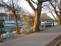 The canal walkway in Heilbronn Germany ... this was a beautiful walk back and forth to the office each day.