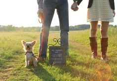 Gotta include furry family in engagements! #engagements #dog #photo #cute