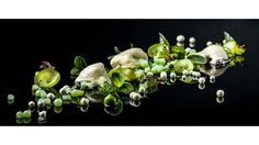 Heiko Nieder – Oysters with Granny Smith, cucumber and tobiko wasabi