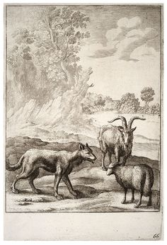 The wolf and the lamb, Wenceslas Hollar