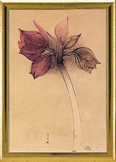 "Bruno Bruni:Bild ""Amaryllis spectabile"", 1991 http://www.easyart.com/art-prints/Bruno-Bruni/Amaryllis-I-Fiori-165340.html"
