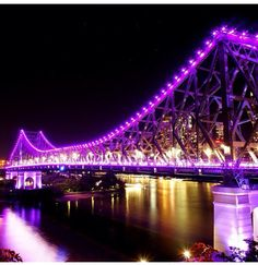 Who saw the Story Bridge lights last night as they were lit purple in support of Epilepsy Queensland's Purple Day?