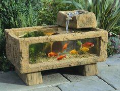 outdoor aquarium, this is very unique