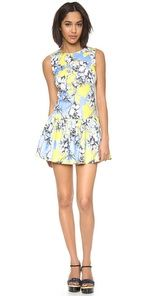 Torn by Ronny Kobo Brady Floral Dress Compare