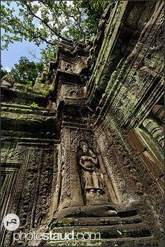 Ancient ruins of Ta Prohm Temple, Angkor, Cambodia