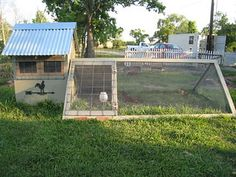 Portable chicken coop -only advantages here