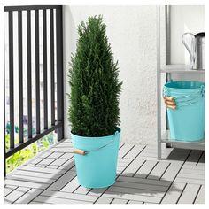 SOCKER Bucket/plant