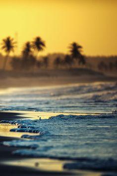 """earthyday: """" Sea waves  by Cumbugo """""""