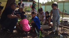 Urban Farming: A Food Desert Oasis - KCET is working with community partners in El Monte and South El Monte to learn about the health and nutrition options available to residents in both cities and throughout the San Gabriel Valley and beyond. Help us...