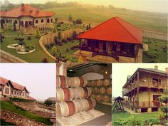 Top 6 Wineries to Visit in Moldova - Chateau Vartely: Modern technology intertwined with local tradition