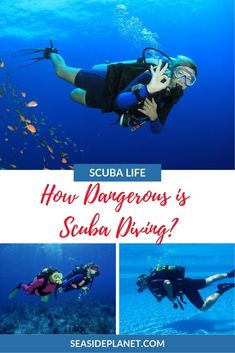 Are you wondering how dangerous is scuba diving? Then you've come to the right place because we've got the FACTS about this popular sport. Scuba Diving Courses, Scuba Diving Equipment, Scuba Diving Gear, Cave Diving, Cozumel, Cancun, Tulum, Learn To Scuba Dive, Scuba Diving Certification