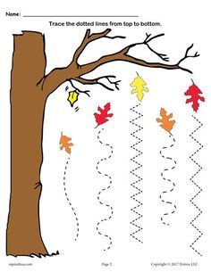 FREE Printable Fall Line Tracing Worksheets! These two free fall themed line tracing worksheets are great for both preschoolers and kindergartners. The first one includes straight lines for beginning tracers, and the second tracing worksheet. Line Tracing Worksheets, Printable Preschool Worksheets, Tracing Lines, Worksheets For Kids, Free Printable, Printable Shapes, Coloring Worksheets, Shapes Worksheets, Fall Preschool Activities