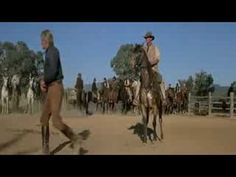 part 2 of our video made at the Lanier Familiy Reunion Movies Showing, Movies And Tv Shows, Man From Snowy River, Good Movies, The Man, Celtic, Westerns, Movie Tv, Australia