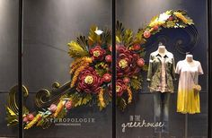 In The Greenhouse: Our Spring 2017 Windows - Anthropologie Blog